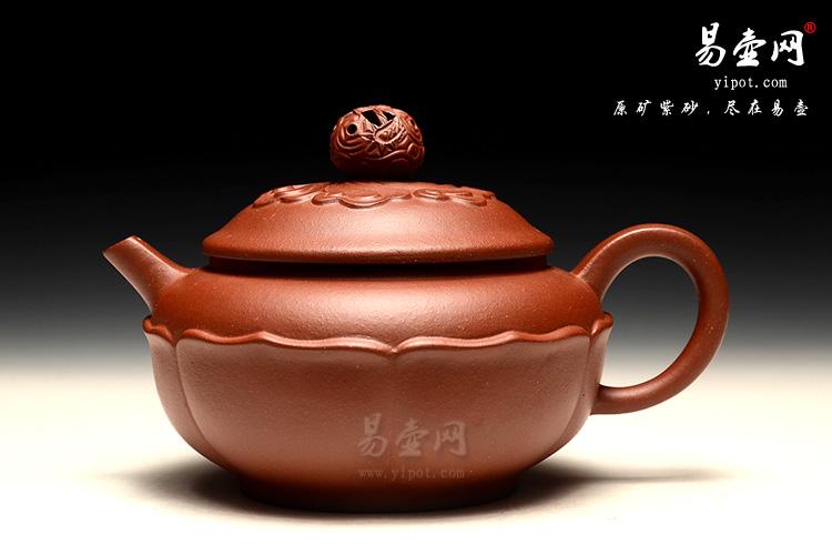 周荣华紫砂壶,莲花龙珠壶图片